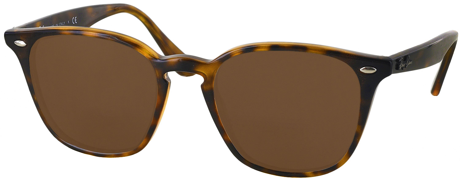 ray ban 4258 polarized